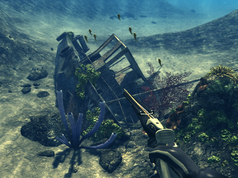 Depth Hunter is an underwater fish and treasures hunting game.
